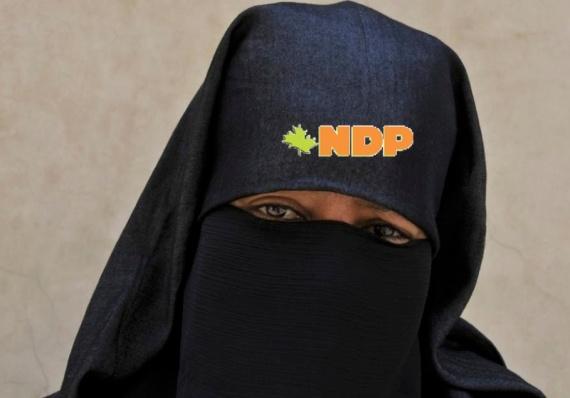 N D P Niqab 2